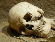 É tão difícil nos identificar com nosso corpo pós-morte quanto admitir que vamos morrer