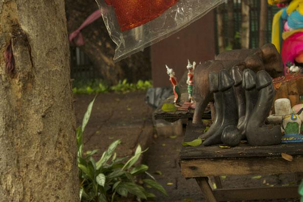 o-santuário-das-rolas