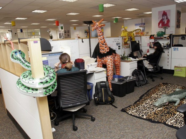 say-goodbye-to-boring-office-spaces--the-san-francisco-office-went-with-a-safari-theme